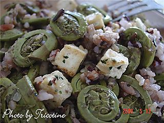 Fiddleheads with Tofu and Japonica Black Rice